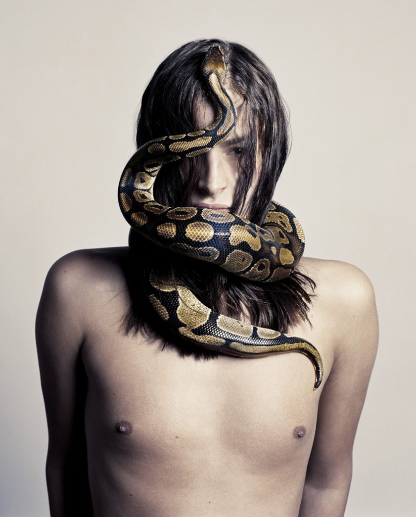 Snake n° 5 • Jean François Carly